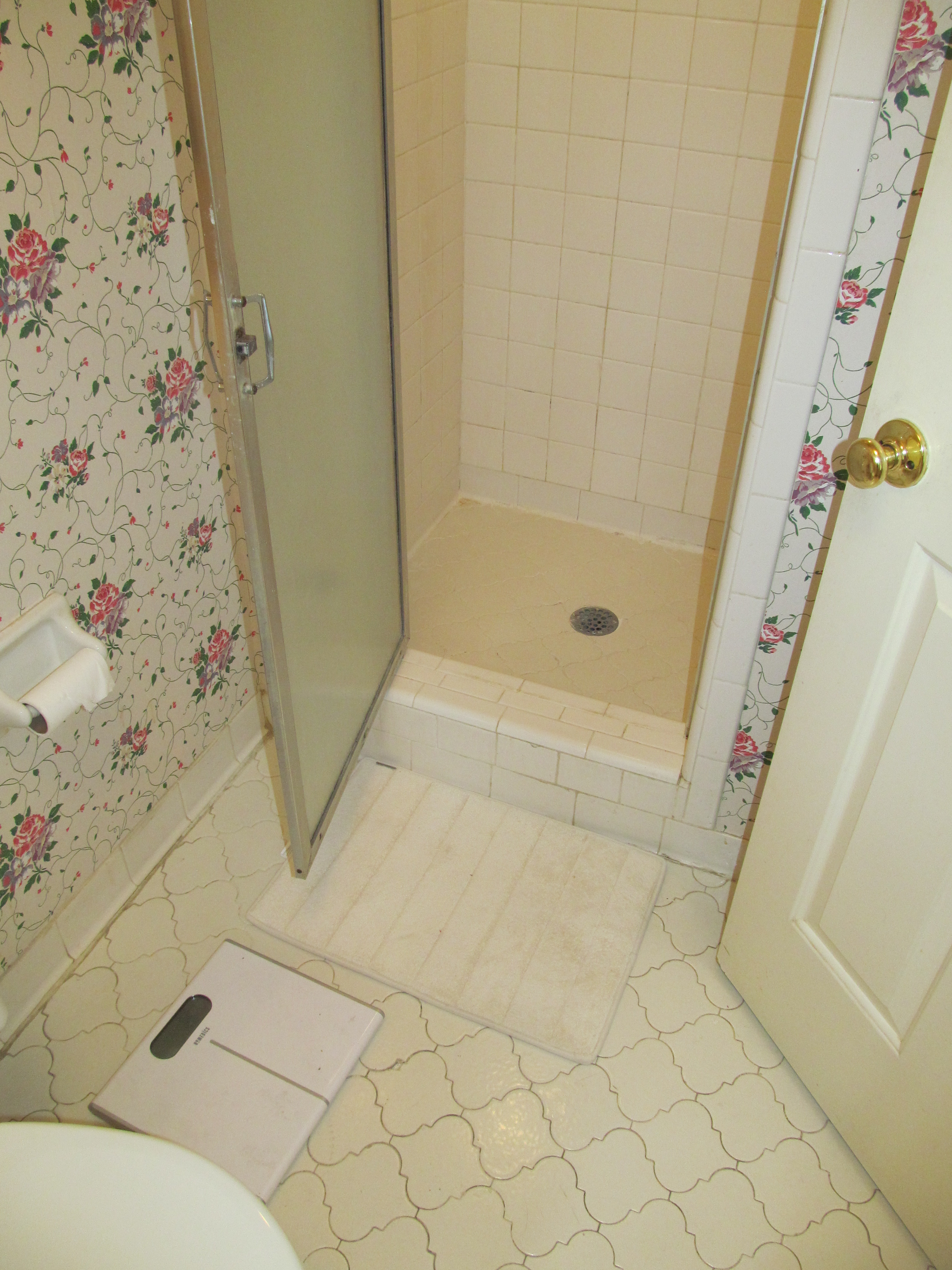 Previous Shower